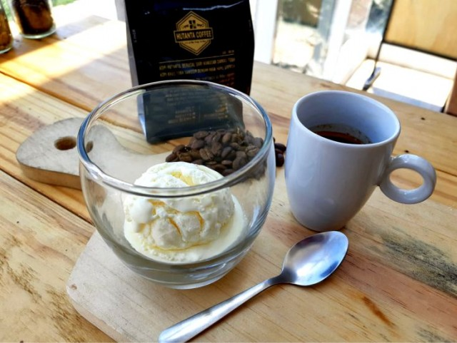 Hot Coffee Affogato - Espresso Arabica Normal Size