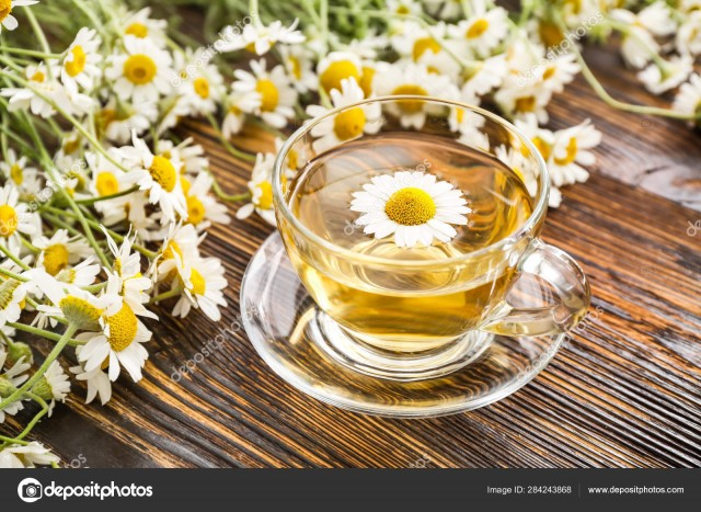 Hot Tea Premium Tea Camomile Tea - -